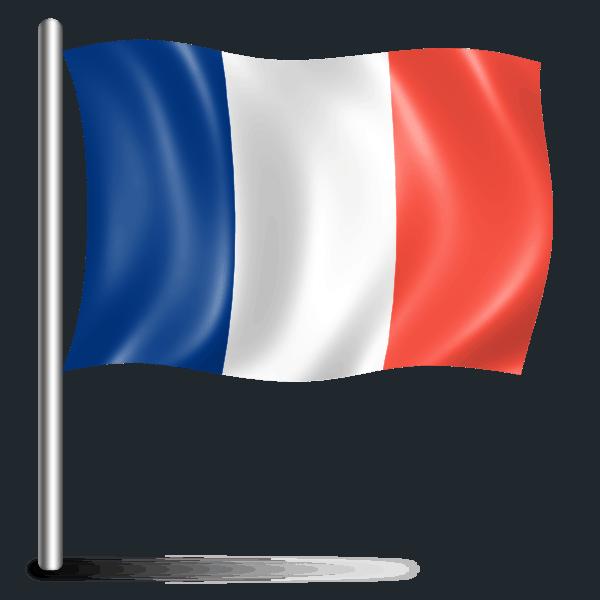 Курсы французского языка в Самаре. Французский в Самаре индивидуальные уроки с носителем языка. Французский для начинающих с нуля - начальный уровень. Подготовка к ЕГЭ, ОГЭ по французскому.